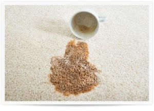 Tips To Remove Carpet Stains Delta Chem Dry