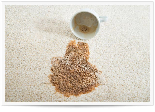 carpet stain removal los angeles