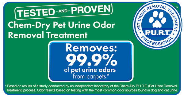 chem dry removes 99.9% of odors and 99.2% of bacteria from pet urine